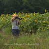 My friend Charity taking photos of the sunflowers
