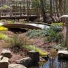 """Japanese Garden"""