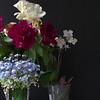 Evening bouquet geranium on window sill