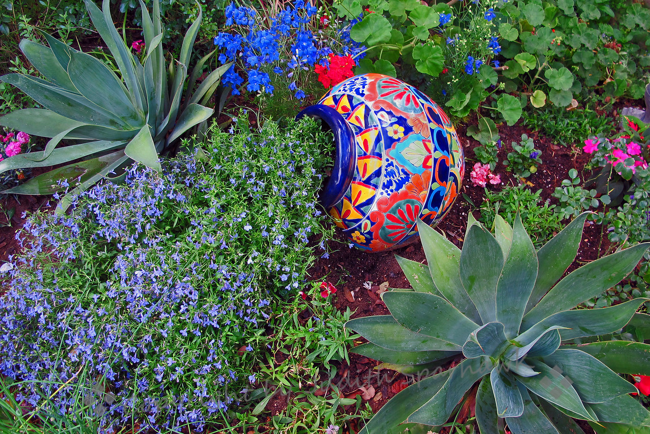 In the Garden ~ The colorful pot was a nice touch in this garden in Redlands.
