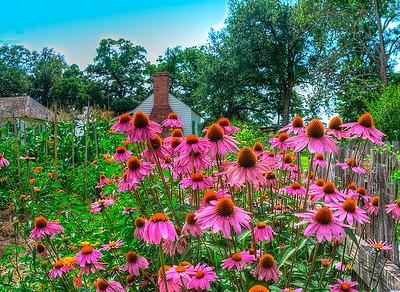 Plantation flower garden