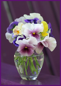 F-V-0089-13 Pansy Bouquet