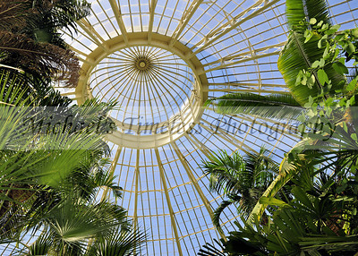 Botanical Gardens Dome - 5 x 7