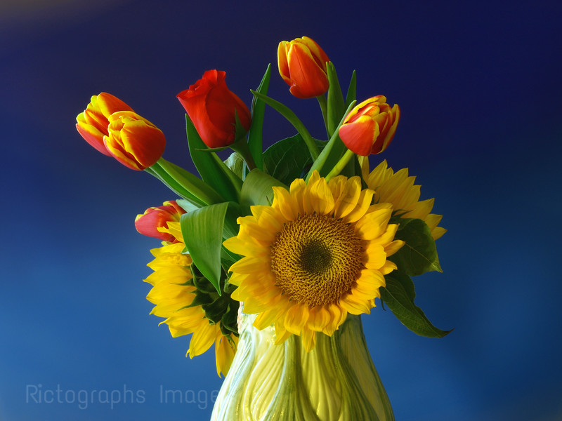Spring Bouquet, Sunflowers & Tulips