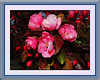 Pink Apple Blossoms Ric Evoy Rictographs images