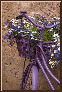 Blumenbouquet im Fahrradkorb