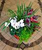 BasketOfPlants_Web_0870
