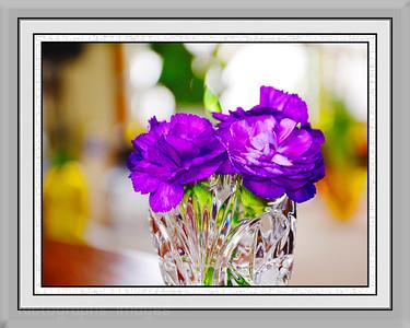 Art Framed Flowers