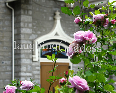 Title: Lilac Roses frame a Temple Door. Salt Lake City, Utah