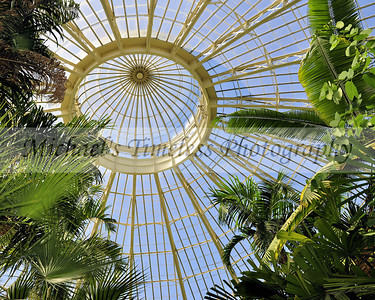 Botanical Gardens Dome - 8 x 10