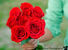 May 11, 2007 - roses for you