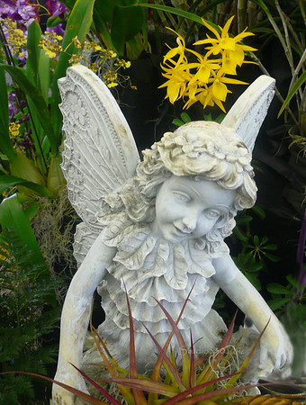 angel in orchids 0508