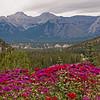 Hotel View Banff Canada
