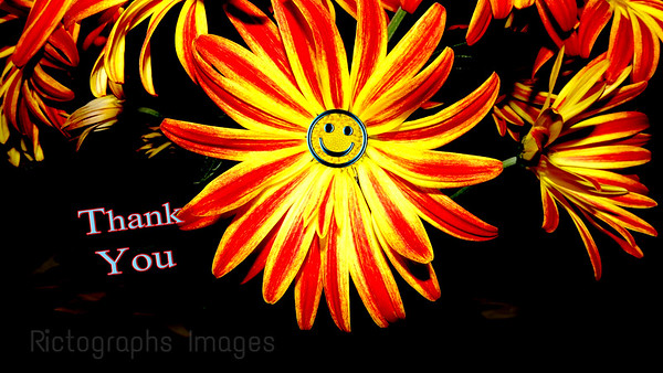 Smile, Flower, Rictographs Images