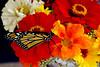 Monarch On Wildflowers