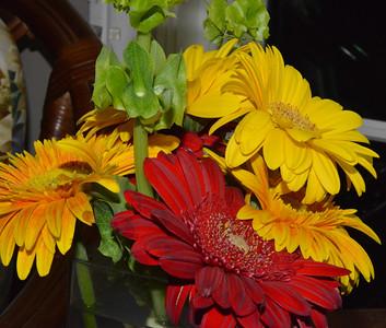 Charlotte's Flowers