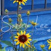 Petoskey Photographer - Sandra Lee Photography #113      Also serving Harbor Springs and all of Northern Mi