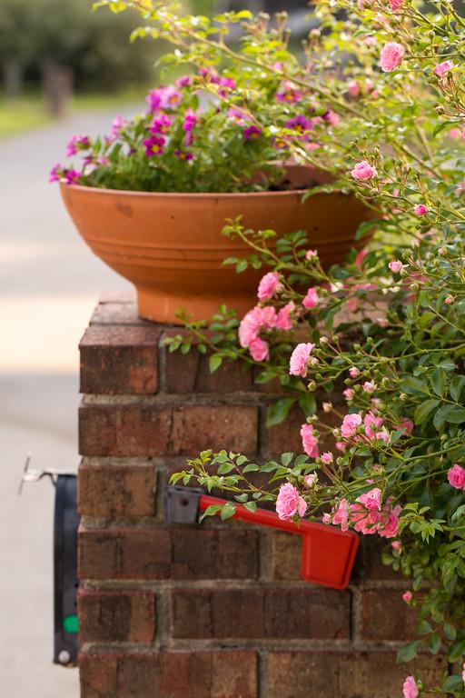 Mailbox flower bed