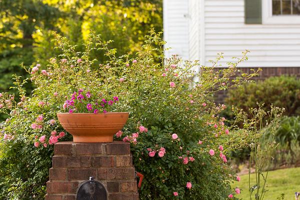 Flower planting around a mailbox