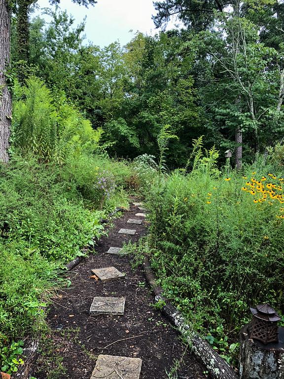 Garden path whit flowers on each side