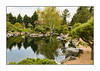 A view of the Japanese Garden at the Denver Botanical Garden; view detail in the largest sizes.