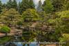 Japanese Garden, Denver Botanic Gardens