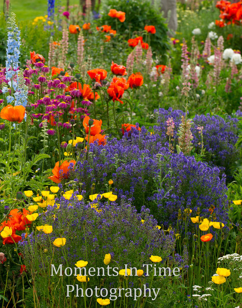 Garden Montana