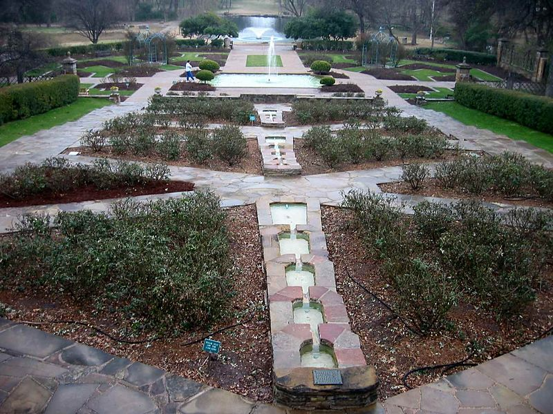 Roses leafing out at Ft Worth Botanic Garden