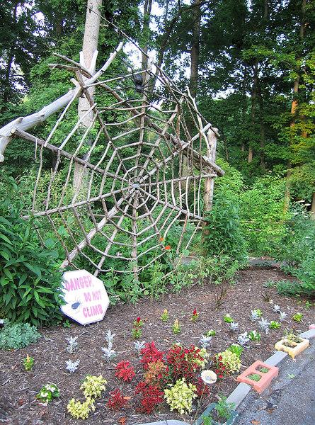 Wooden spider web