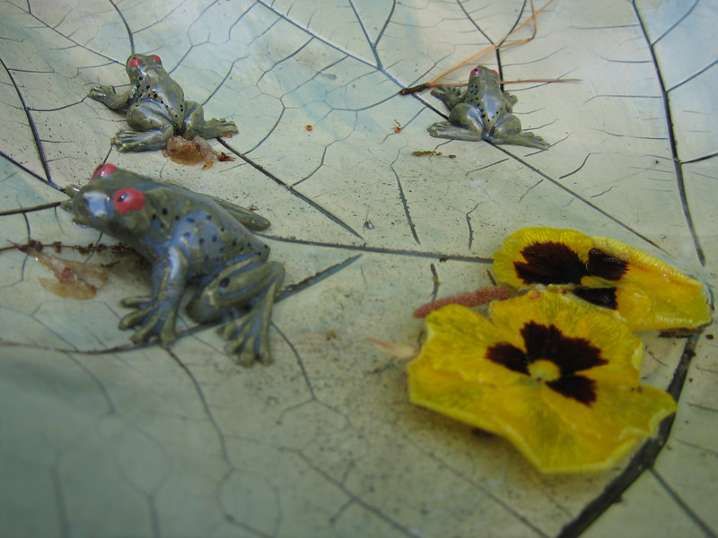 Rita Bigham's garden - looking at 'frog' and flower petals in bird bath