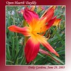 00aFavorite 06292003 'Open Hearth' [gradient borders, text]