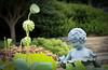 08152008 Cherub with lotus pods