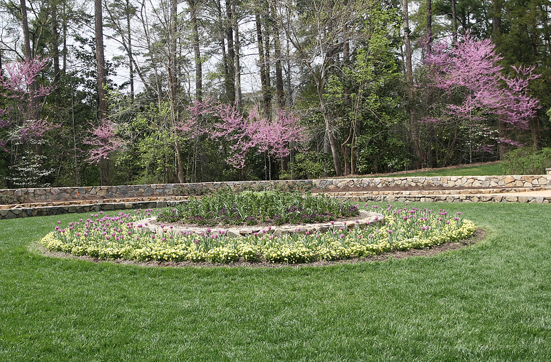 03312007 Circle near roses with redbuds blooming in bg