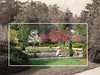 03292006 Terrace garden [partial 38y sepia toning, inscribed rectangle]
