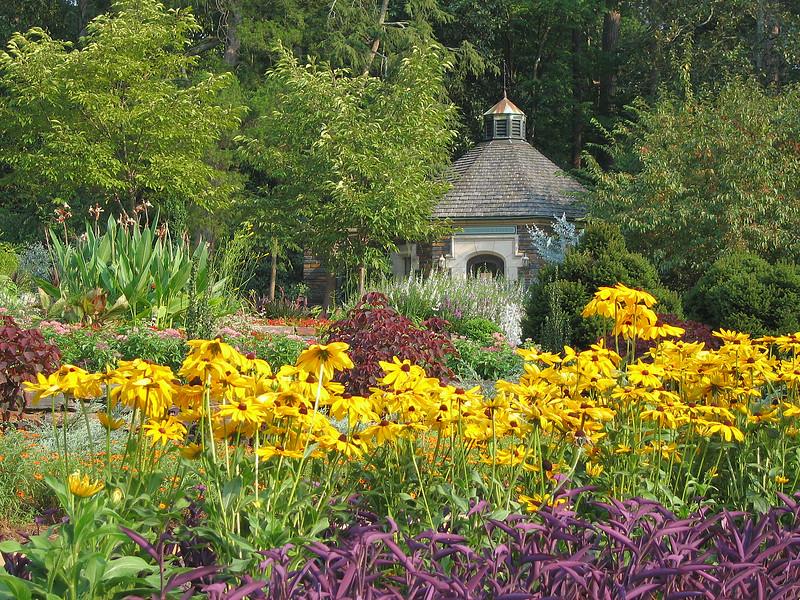 00aFavorite 08022006 Building in bg of many blooming flowers