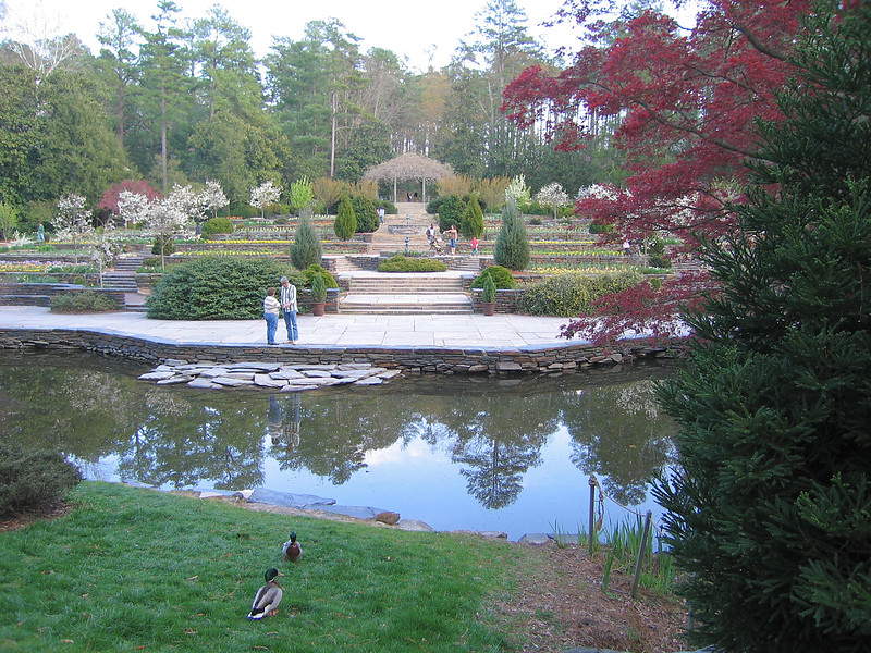 03292006 Sharing view with ducks of pond, terraces, and pergola