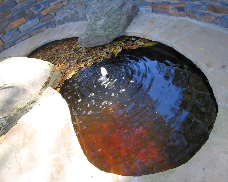 11032006 Kidney-shaped pool