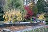 11092008 Looking toward pond