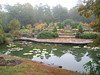 10222006 Looking up at gardens from pond on a cloudy day