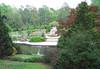 04212006 Terrace garden incl pergola and pond