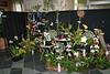 Franklin Park Conservatory (6 Grand Atrium [orchid show]) - 20080329 (1226p) 09979