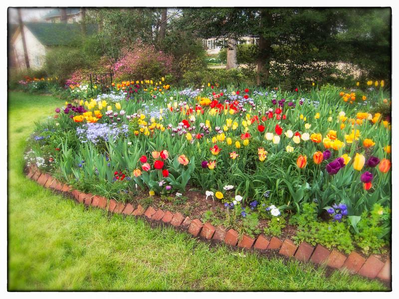 00aFavorite C 04012018 Sisters' Garden, Chapel Hill NC (545p) (garden)