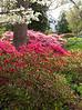 C 04082009 Sisters' Garden, Chapel Hill NC (07-4494, 1132p) (garden)