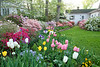 C 04172009 Sisters' Garden, Chapel Hill NC (02-4885, 1920p) (garden)