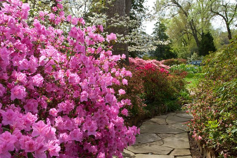 C 04082009 Sisters' Garden, Chapel Hill NC (06-4493, 1131p) (garden)