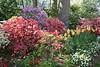 C 04082007 Sisters' Garden, Chapel Hill NC (02-3422, 408p) (garden)