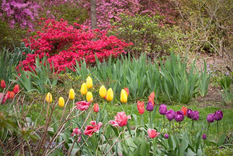 C 04082009 Sisters' Garden, Chapel Hill NC (11-4506, 1158p) (garden)
