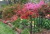 C 04072008 Sisters' Garden, Chapel Hill NC (02-0401, 120p) (garden)