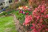 00aFavorite C 04082009 Sisters' Garden, Chapel Hill NC (01-4491, 1127p) (garden)
