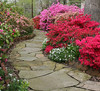 C 04072008 Sisters' Garden, Chapel Hill NC (04-0404, 122p) (garden)